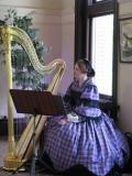 Carnegie Free Library Harp 2012